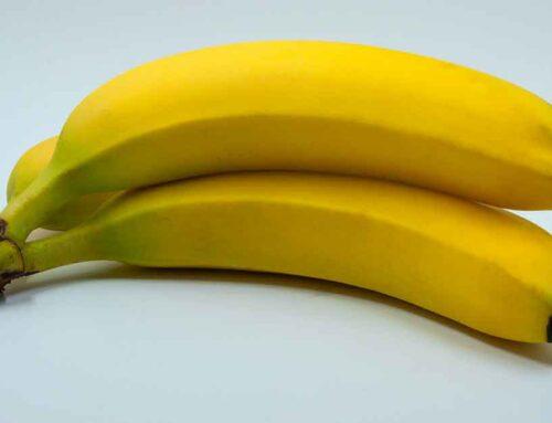 Le banane sono radioattive? Sì