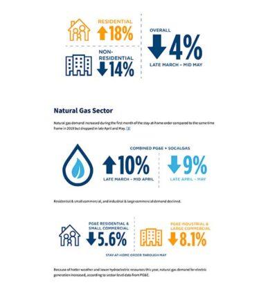 esempio infografica consumi california
